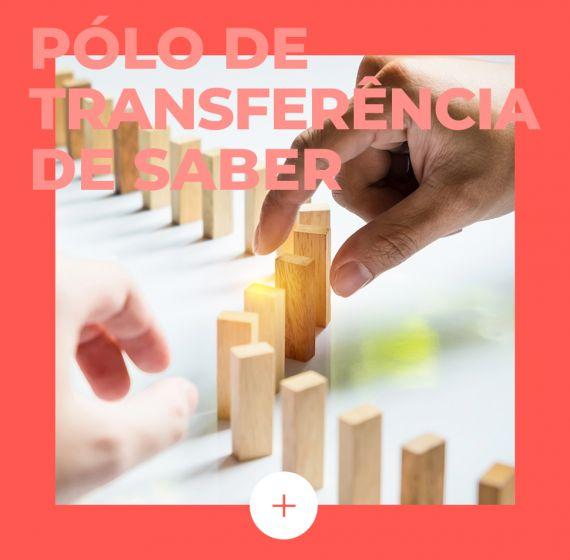 Pólo de Transferência de Saber